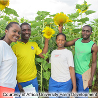 Africa University Farm Development